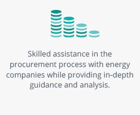 Skilled assistance in the procurement process with energy companies while providing in-depth guidance and analysis.